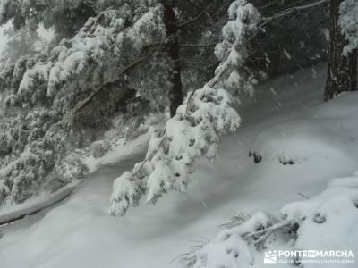 Valle de Iruelas - Pozo de nieve - Cerro de la Encinilla;senderismo andalucia senderismo aragon